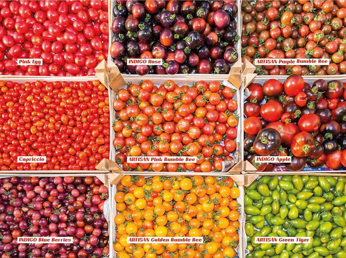 Im Bio-Hofladen gibt es eine Vielfalt an Gemüsesorten.