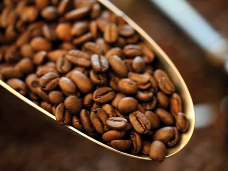 kaffeekontor bonn