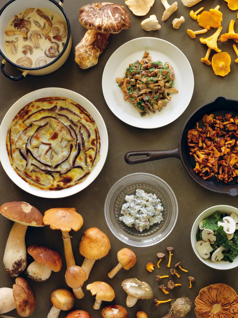 Nordic Food, Pilzgerichte