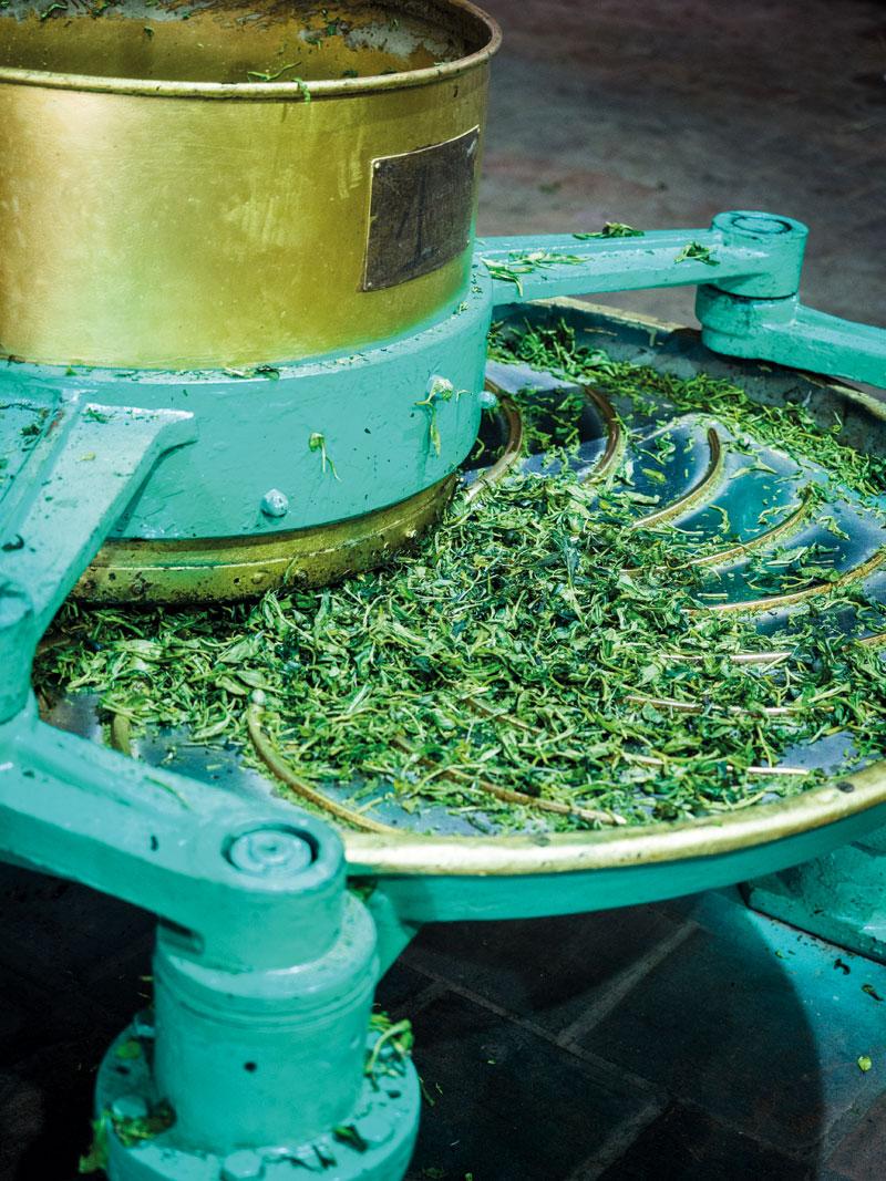 Tee Gschwendener Teeverarbeitung in Vietnam